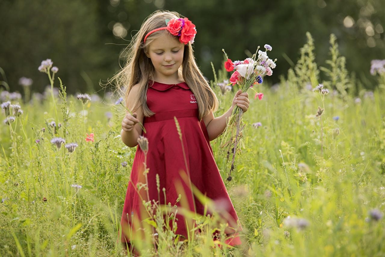 Фото девочка букет ребёнок Платье Девочки Дети Букеты платья