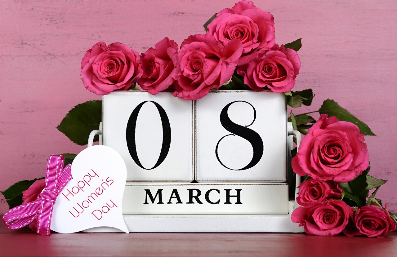 Фотография 8 марта Английский Розы розовая Цветы Бантик Праздники Международный женский день инглийские английская розовых розовые Розовый бант бантики