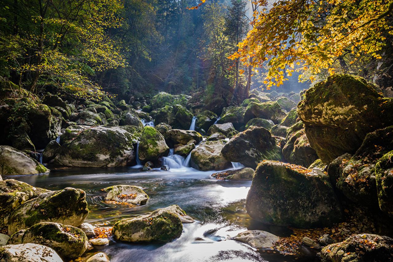 Фотография Швейцария Areuse Schlucht Осень Природа Водопады Мох Камень осенние мха мхом Камни