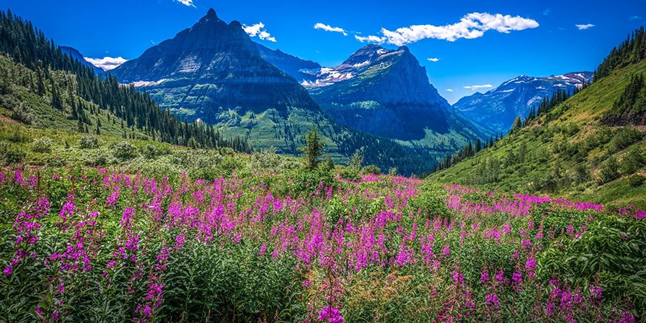 Фотография америка панорамная Glacier National Park гора Природа Парки Пейзаж США штаты Панорама Горы парк