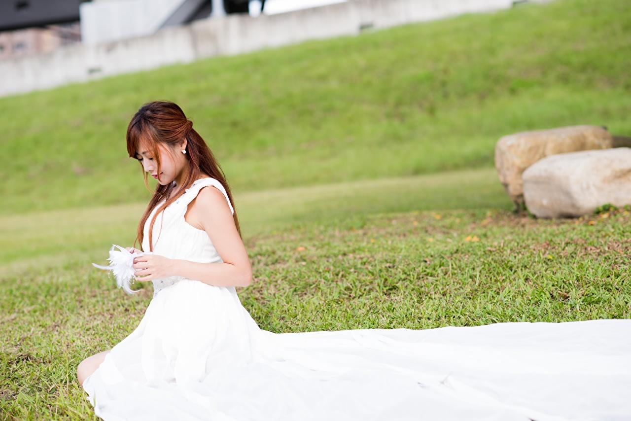 Картинки Шатенка невесты молодые женщины Азиаты сидя траве Платье шатенки Невеста девушка Девушки молодая женщина азиатки азиатка Трава Сидит сидящие платья
