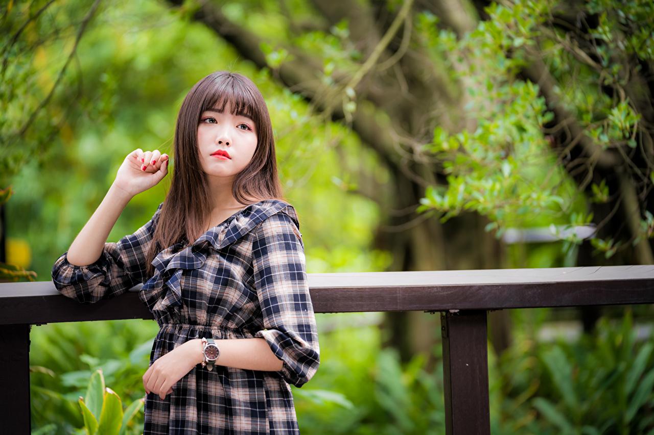 Фотография молодые женщины азиатка Руки Взгляд платья девушка Девушки молодая женщина Азиаты азиатки рука смотрит смотрят Платье
