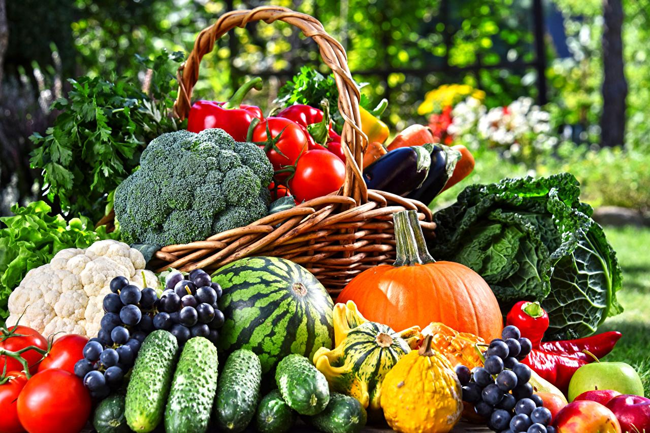 Фото Тыква Огурцы Помидоры Арбузы Виноград Еда Овощи Томаты Пища Продукты питания
