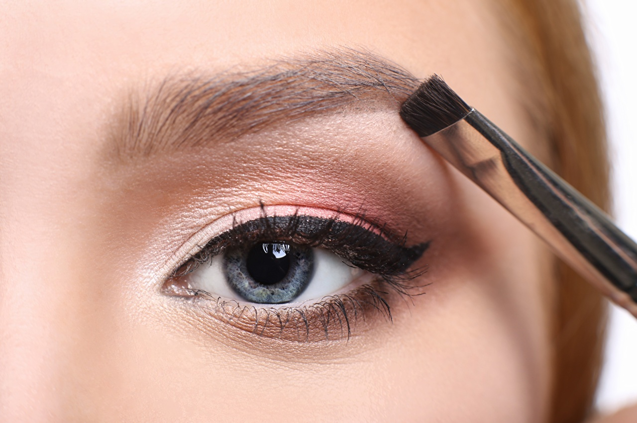 Фотографии Глаза Макияж eyebrows лица молодая женщина Кисть вблизи мейкап косметика на лице Лицо девушка Девушки молодые женщины Кисточки Крупным планом