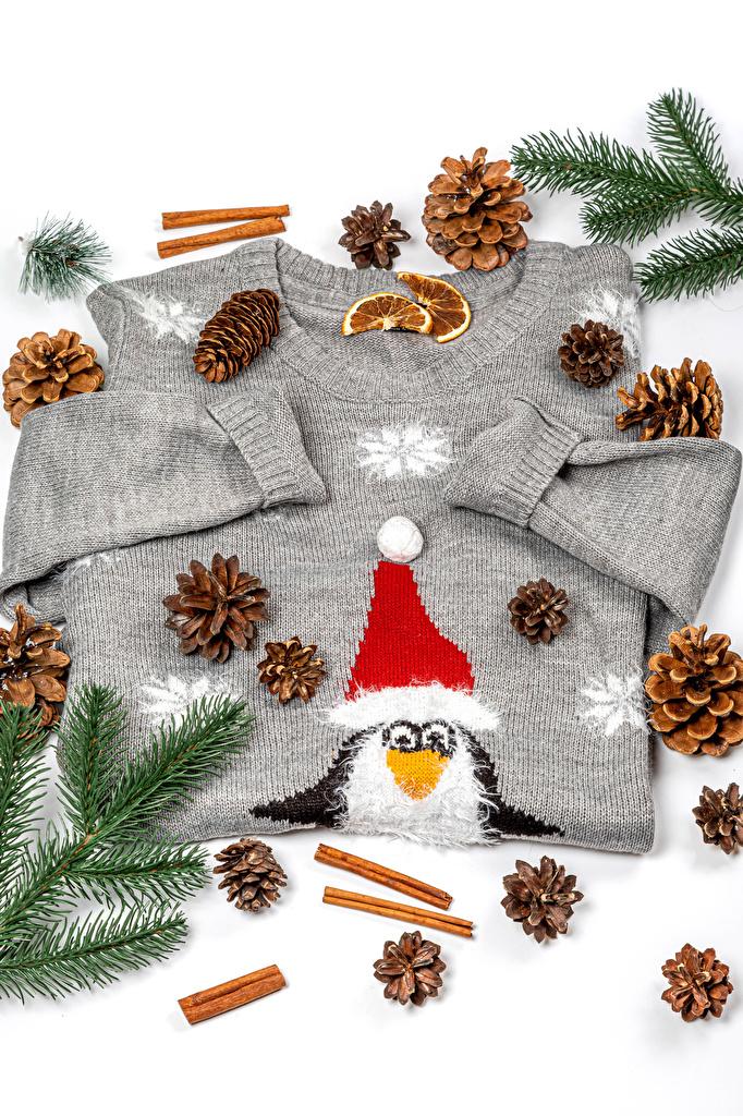 Картинки Новый год шапка Корица Свитер ветвь шишка  для мобильного телефона Рождество Шапки в шапке свитере свитера Ветки ветка Шишки на ветке
