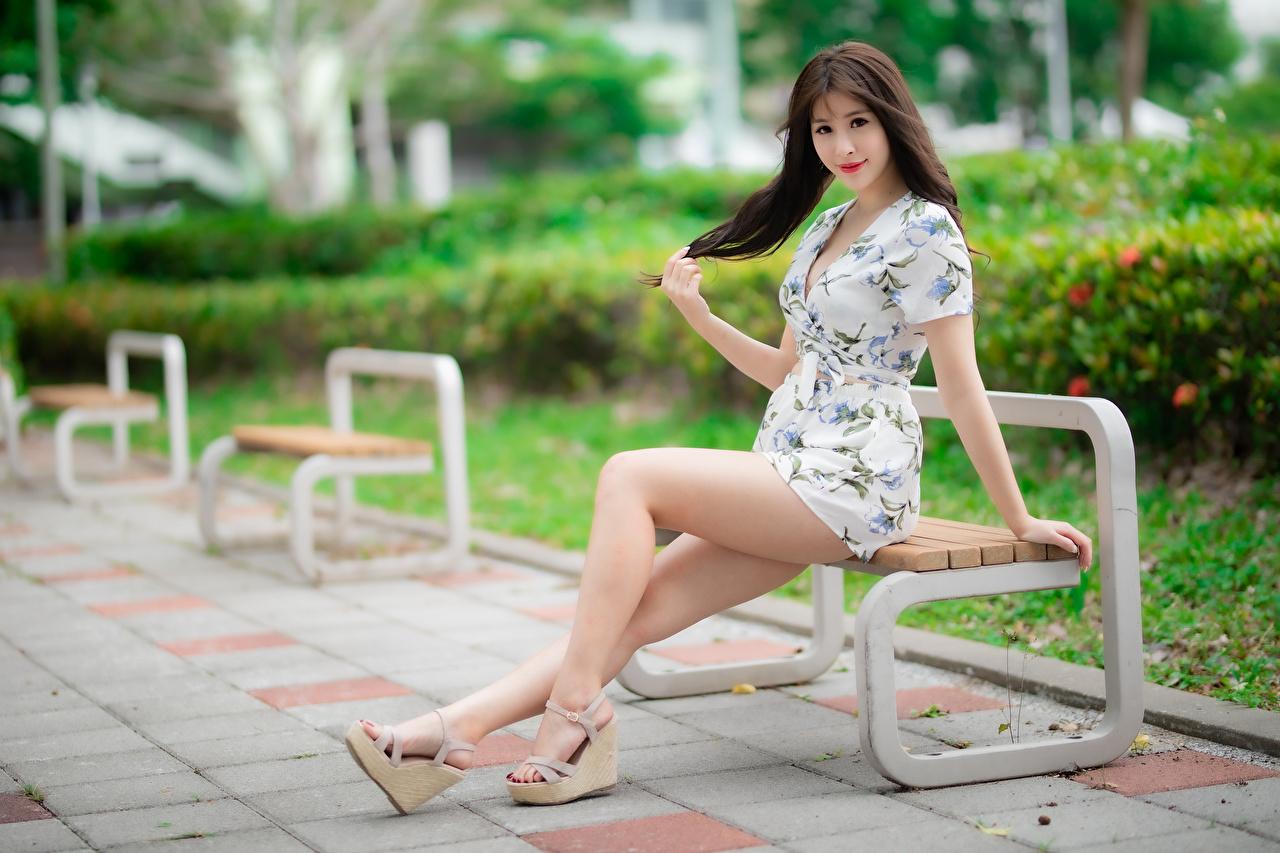 Фотография Шатенка Девушки Ноги азиатка сидя Скамья смотрит Платье шатенки девушка молодая женщина молодые женщины ног Азиаты азиатки Сидит сидящие Скамейка Взгляд смотрят платья