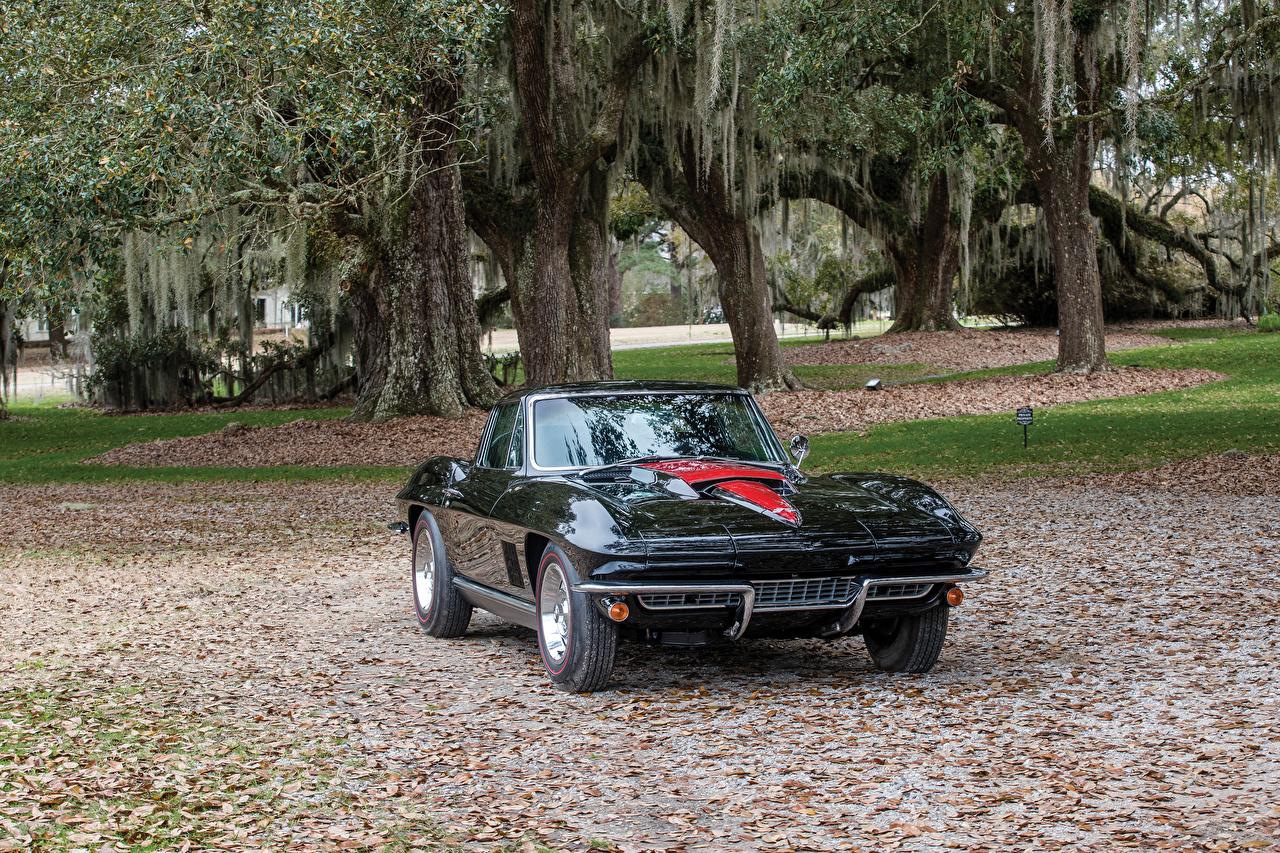 Фотографии Chevrolet 1967 Corvette Sting Ray L68 427-400 HP черные старинные машины Металлик Шевроле Ретро черных Черный черная винтаж авто машина автомобиль Автомобили