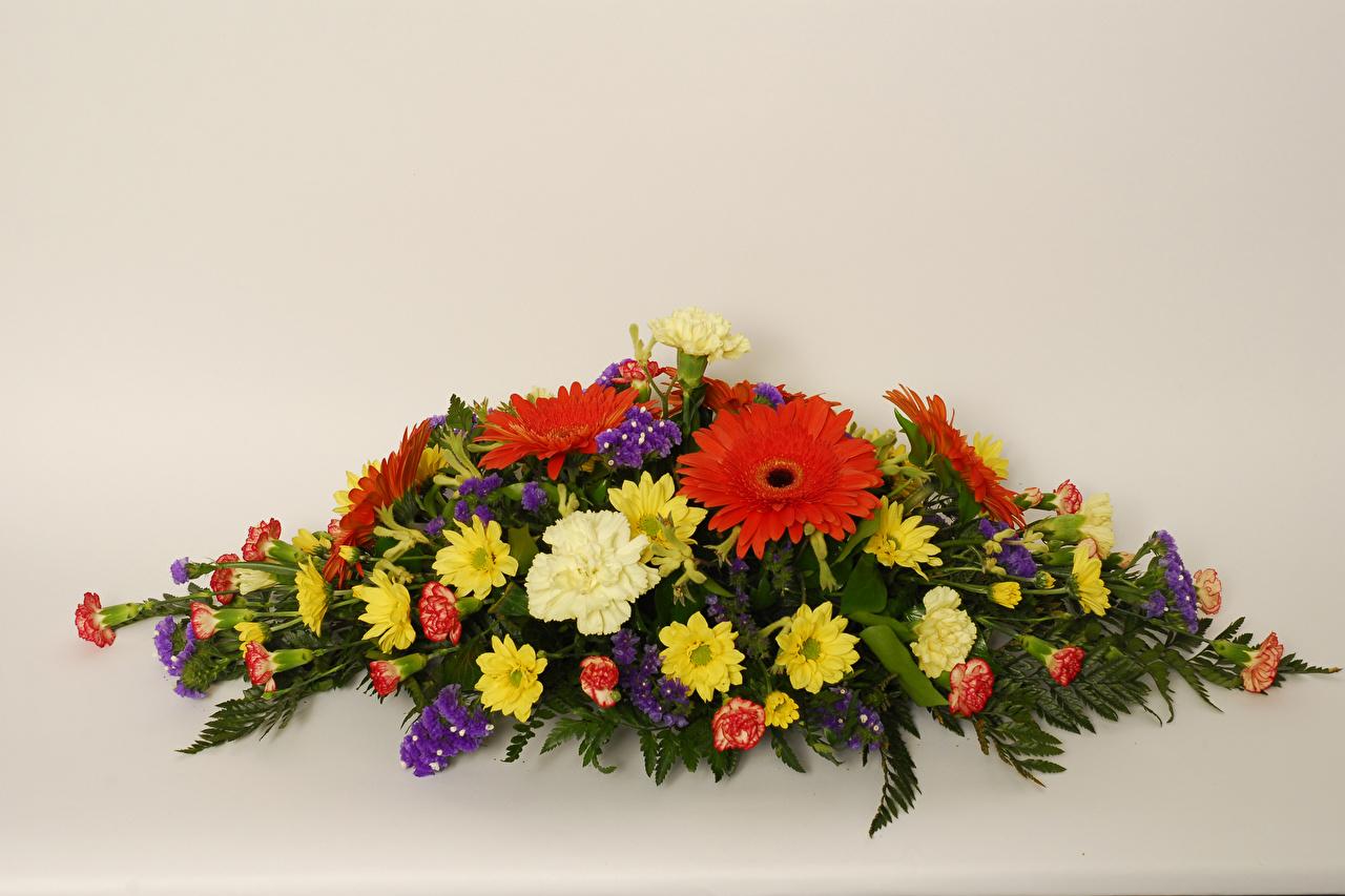 Фото букет гербера Цветы гвоздика Хризантемы Цветной фон Букеты Герберы цветок Гвоздики