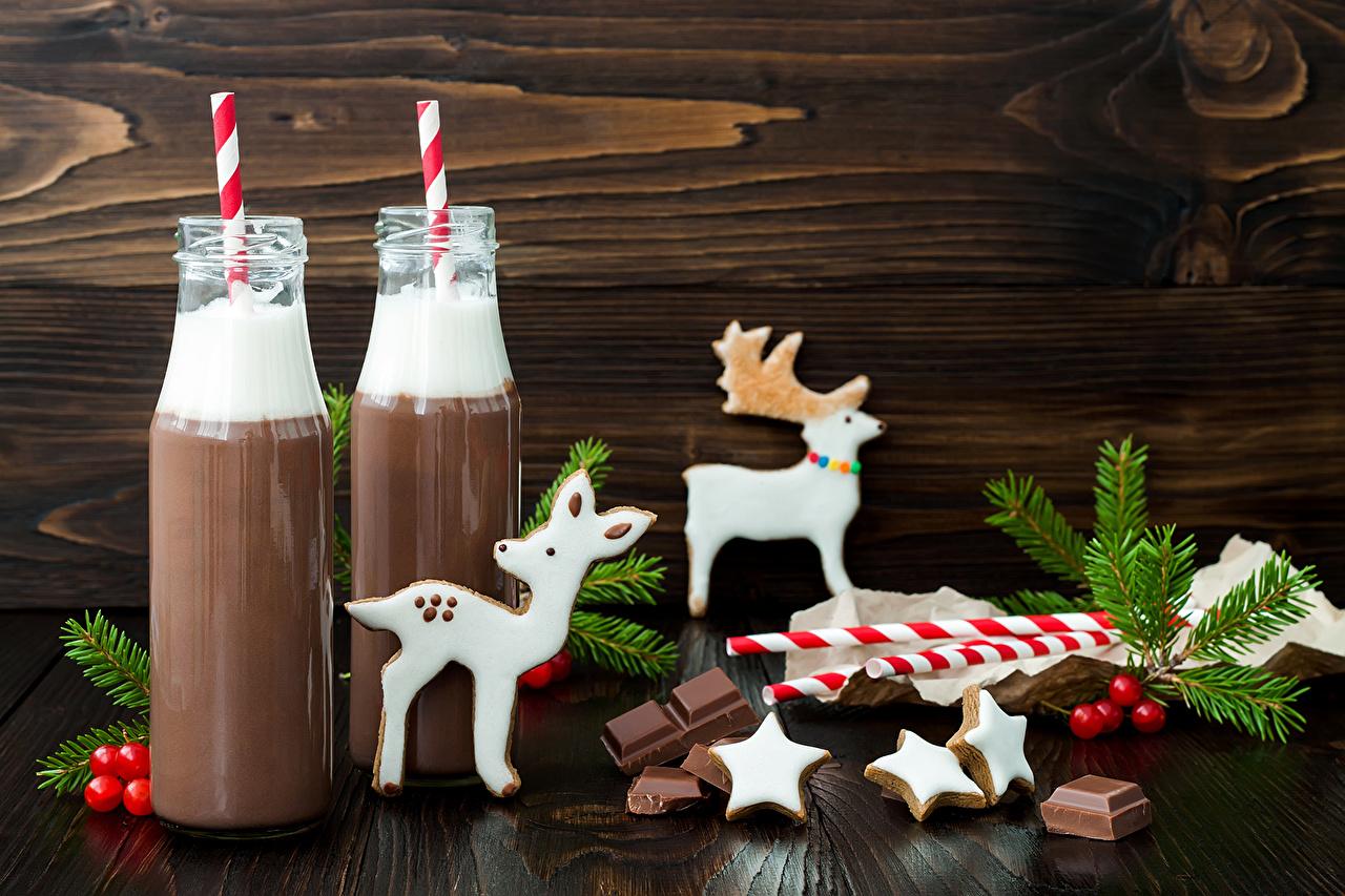 Картинки Олени Новый год Шоколад Какао напиток Печенье Бутылка Продукты питания Напитки Рождество Горячий шоколад Еда Пища бутылки напиток