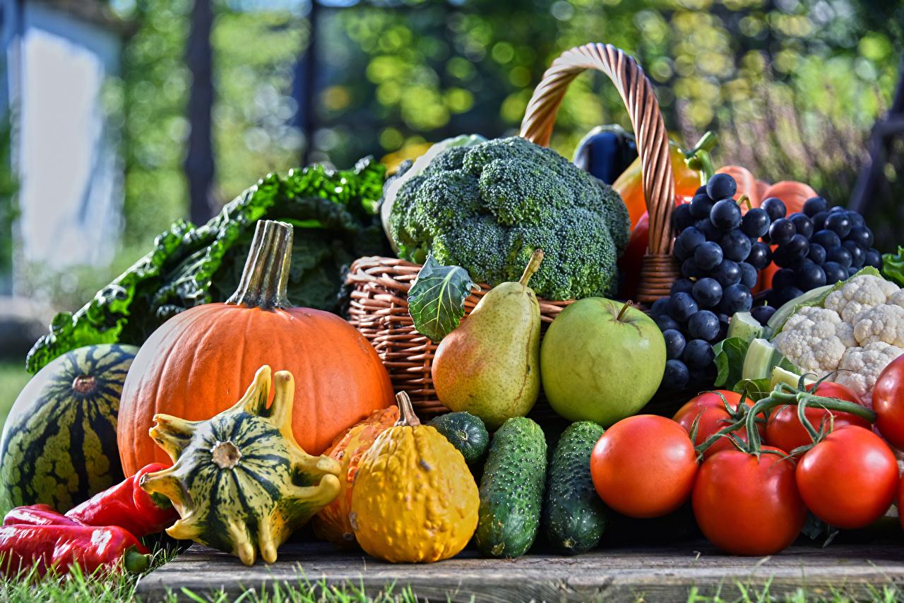 Фотография Тыква Огурцы Томаты Груши Яблоки Виноград Еда Овощи Фрукты Помидоры Пища Продукты питания