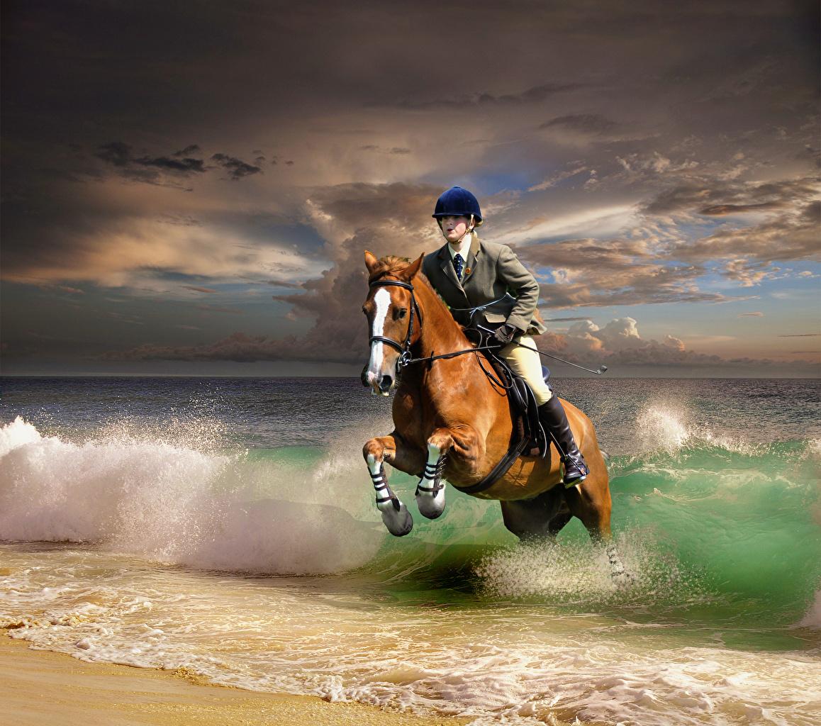Фотографии Лошади Бег Волны Прыжок Побережье Животные берег