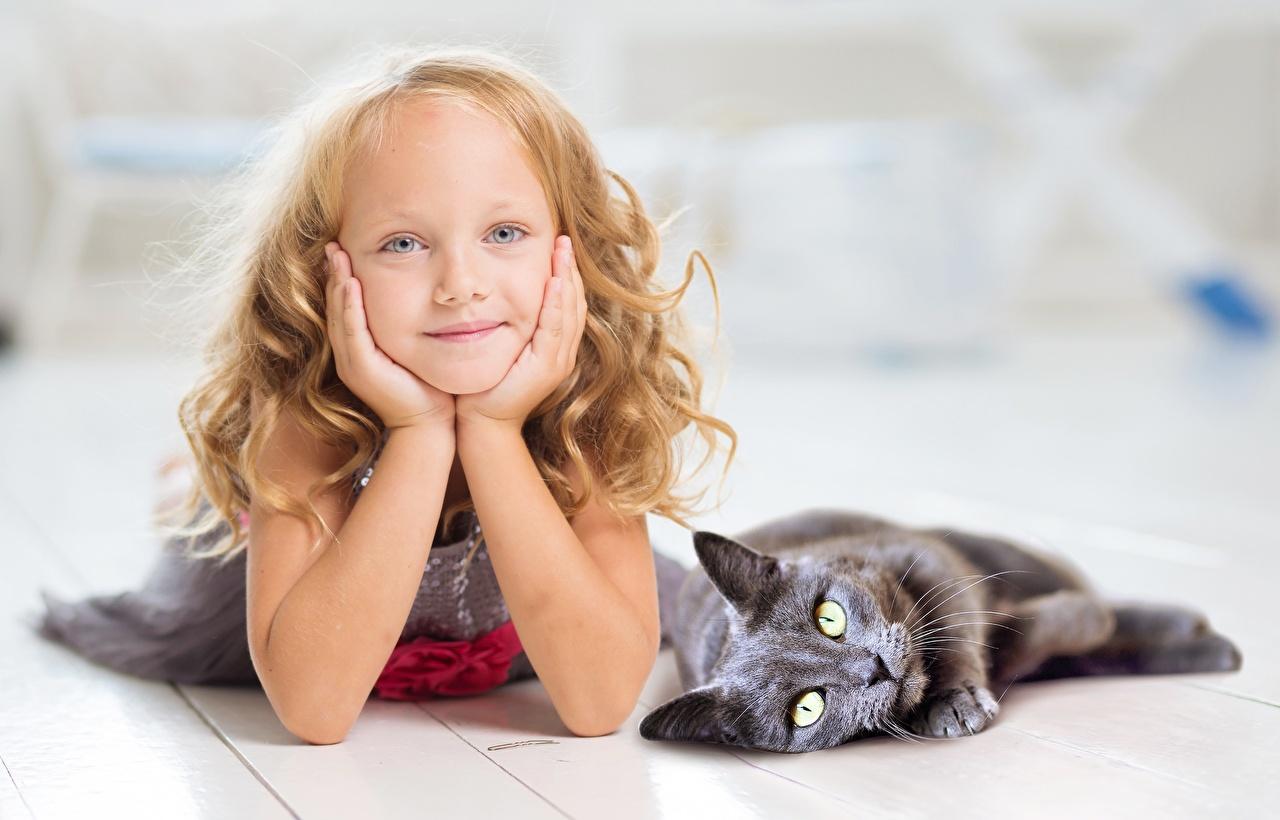 Картинка девочка коты лежа Дети две Руки Взгляд Девочки кот кошка Кошки Лежит лежат лежачие ребёнок 2 два Двое вдвоем рука смотрят смотрит