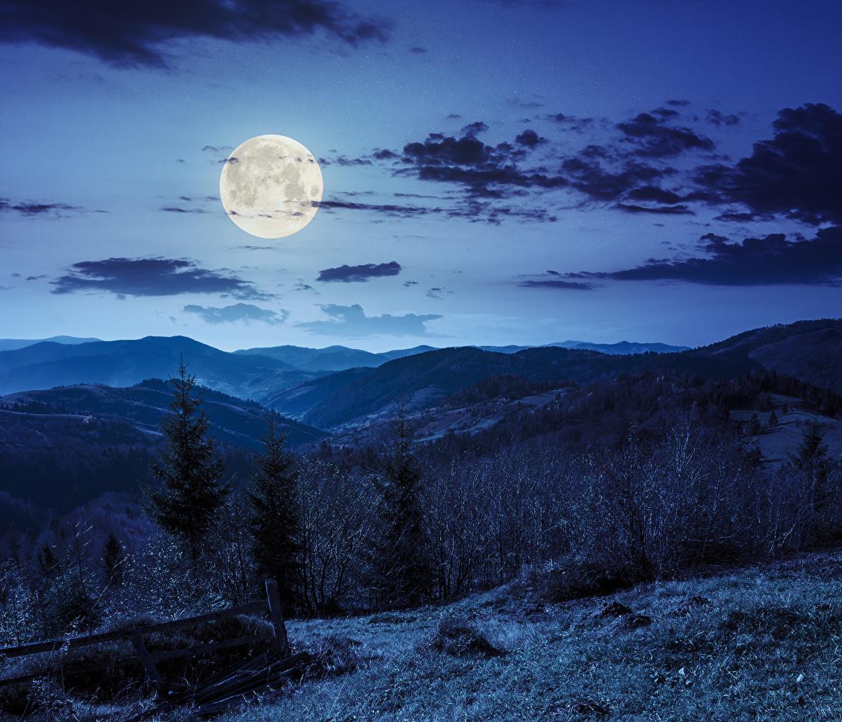 Картинки Ель Горы Природа Небо луны Ночь Облака ели гора Луна луной ночью в ночи Ночные облако облачно