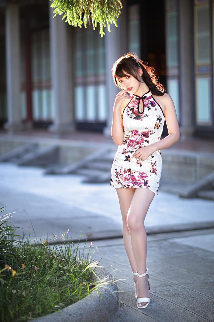 Фото боке Поза девушка ног Азиаты Взгляд Платье  для мобильного телефона Размытый фон позирует Девушки молодая женщина молодые женщины Ноги азиатки азиатка смотрит смотрят платья