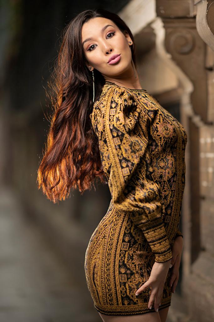 Фото Шатенка боке молодые женщины Взгляд платья  для мобильного телефона шатенки Размытый фон девушка Девушки молодая женщина смотрят смотрит Платье