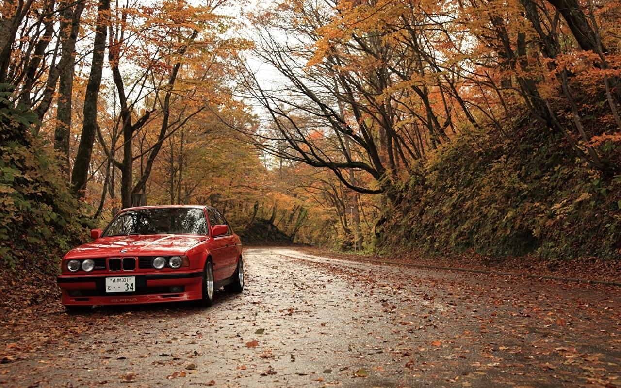 Обои для рабочего стола БМВ Листья Осень Красный Дороги авто сезон года BMW лист Листва осенние красная красные красных машина машины Автомобили автомобиль Времена года
