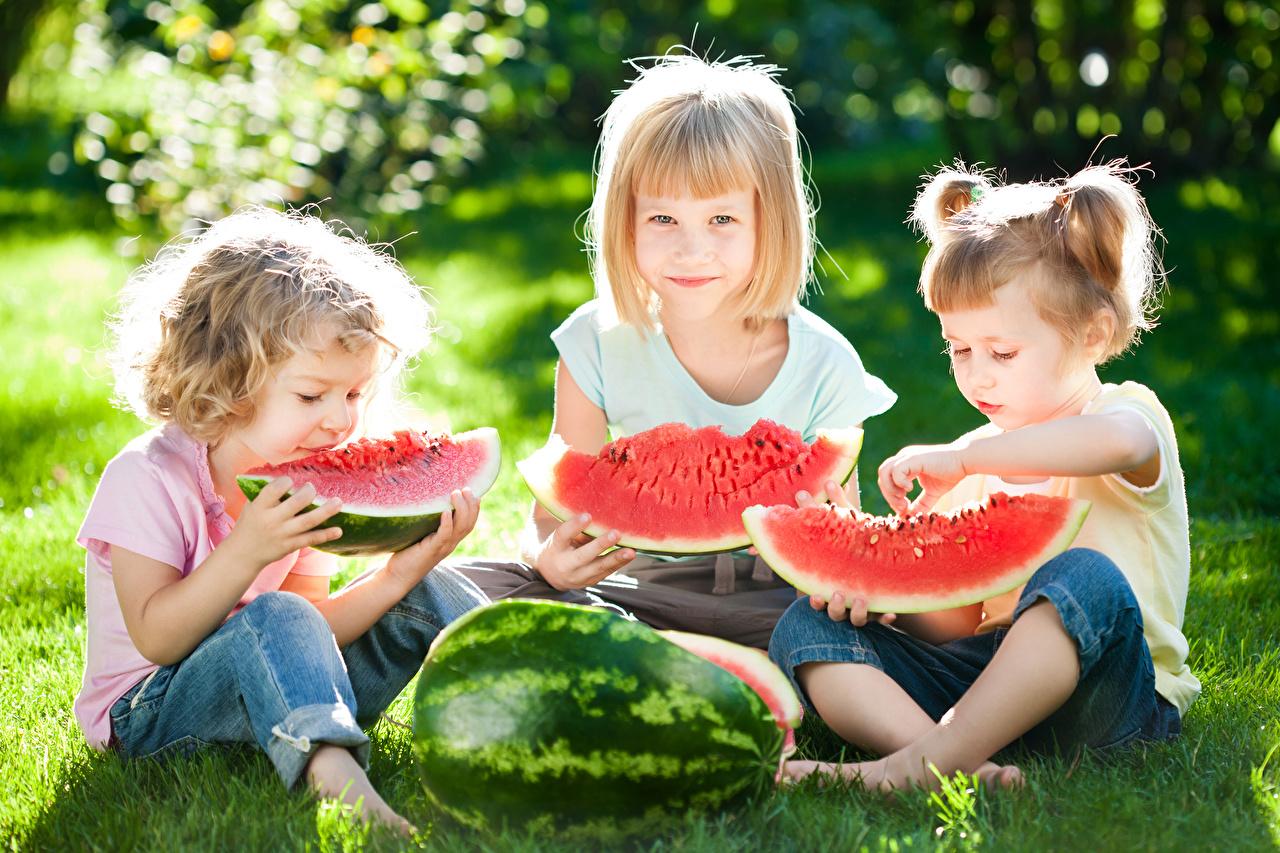 Фотографии девочка Дети Арбузы кусочки Трава Сидит Трое 3 Ягоды Девочки ребёнок часть Кусок кусочек три сидя траве втроем сидящие