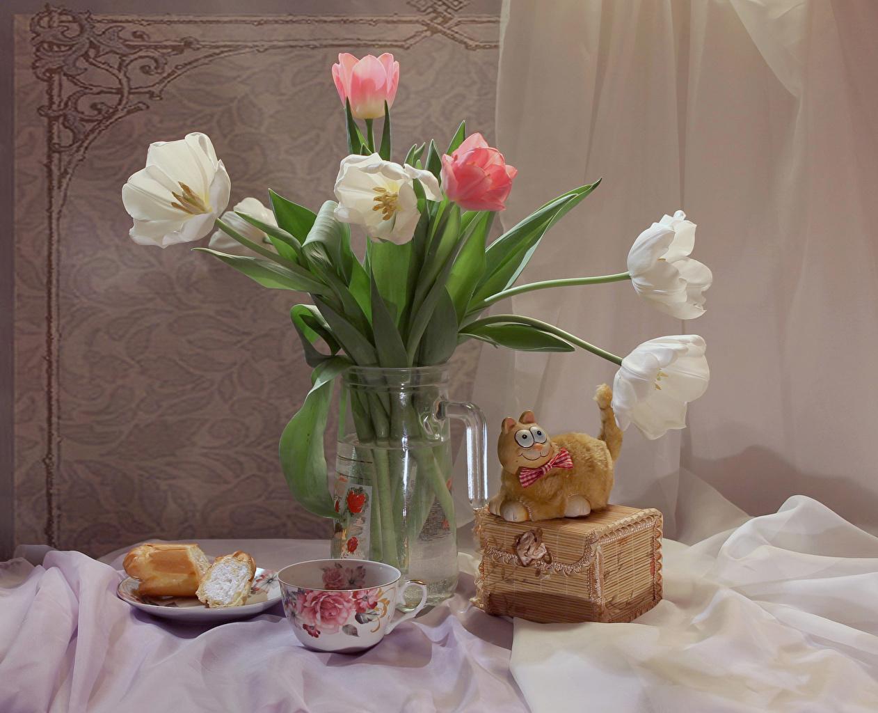 Картинки кот Тюльпаны Цветы вазе чашке Натюрморт коты Кошки кошка тюльпан цветок вазы Ваза Чашка