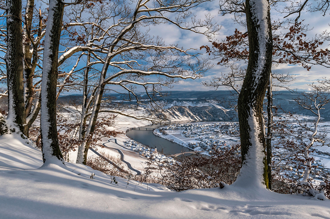 Фотографии Германия Rheinland-Pfalz, river Moselle Зима Природа Снег речка дерева зимние снега снегу снеге Реки река дерево Деревья деревьев