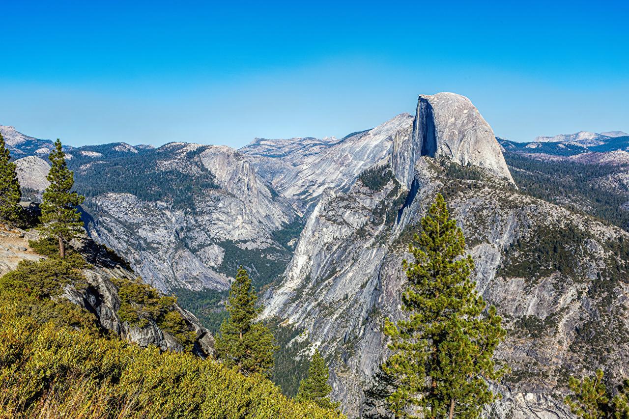 Фото Йосемити Калифорния США Ель Горы Природа парк Мох калифорнии штаты америка ели гора Парки мха мхом