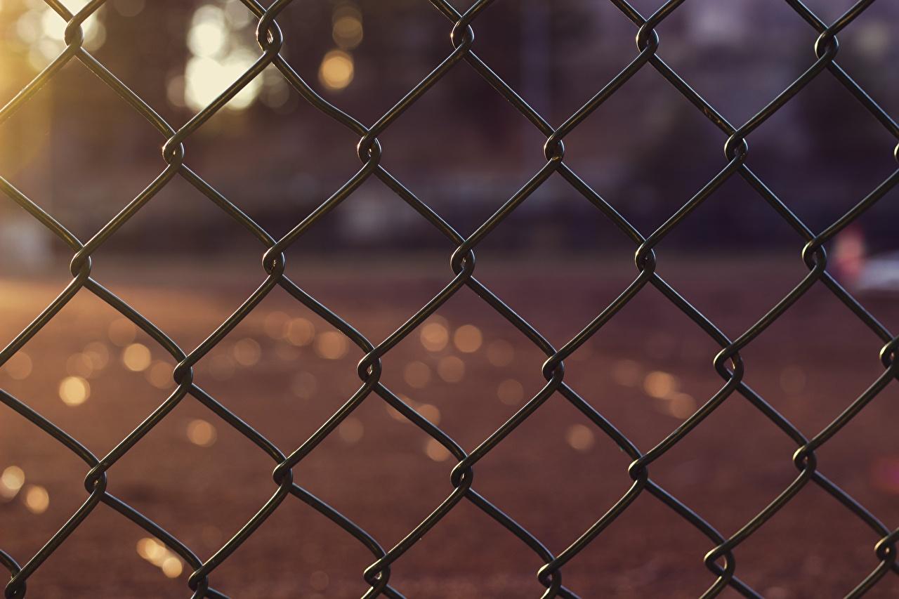 Фотография боке Забор Крупным планом Размытый фон ограда забора забором вблизи