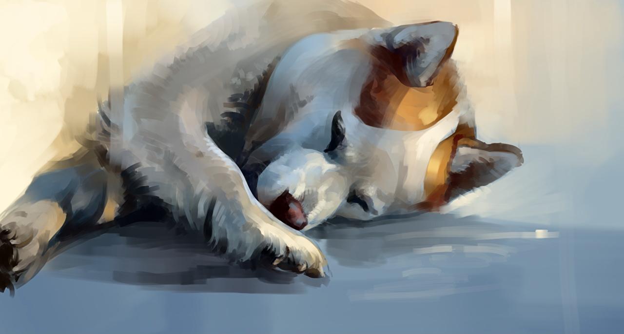 Картинка Хаски Собаки спящий лап животное Рисованные собака сон Спит спят Лапы Животные