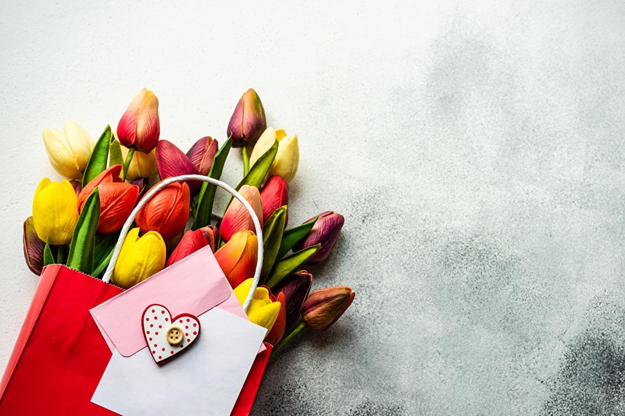 Обои для рабочего стола День святого Валентина Бумажный пакет Букеты тюльпан Цветы Шаблон поздравительной открытки День всех влюблённых букет Тюльпаны цветок