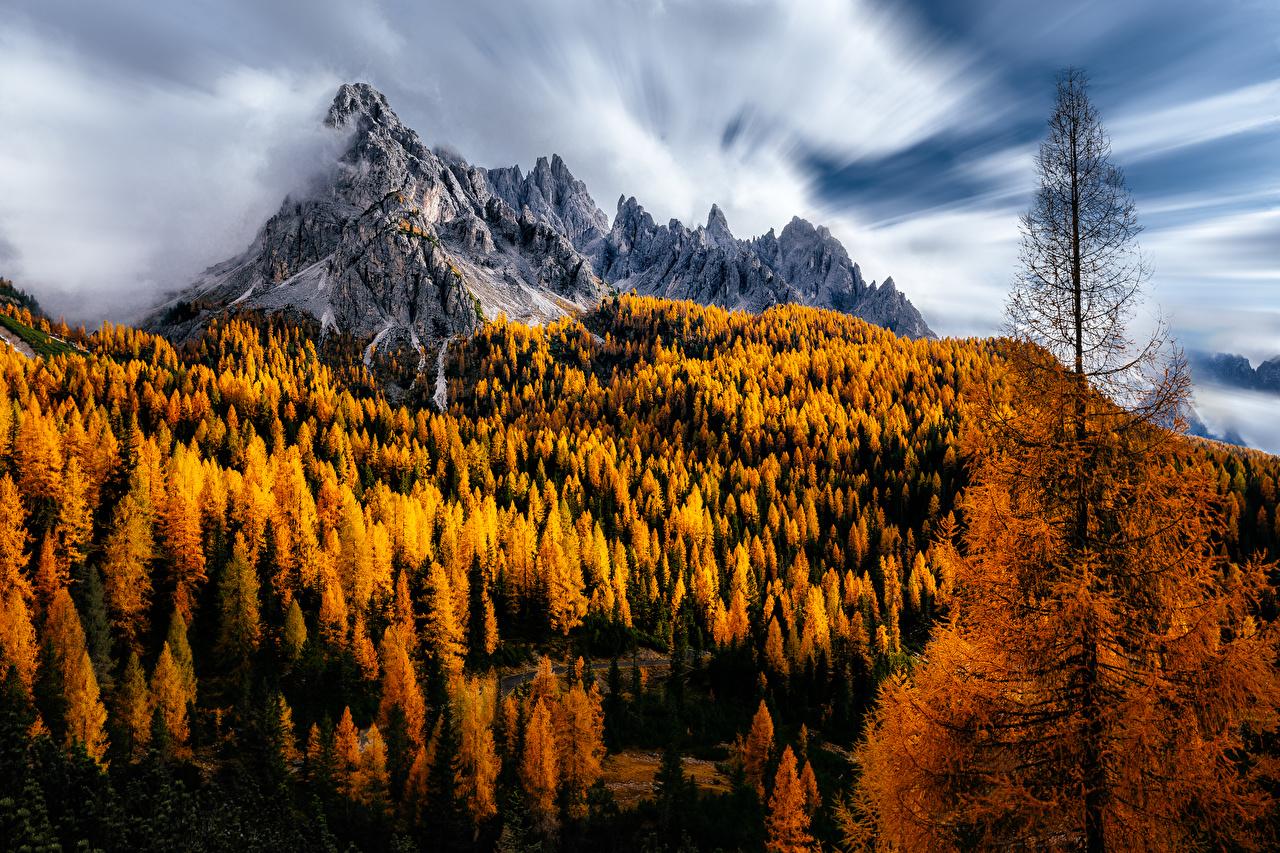Фото Италия Dolomites Горы Природа осенние деревьев гора Осень дерево дерева Деревья