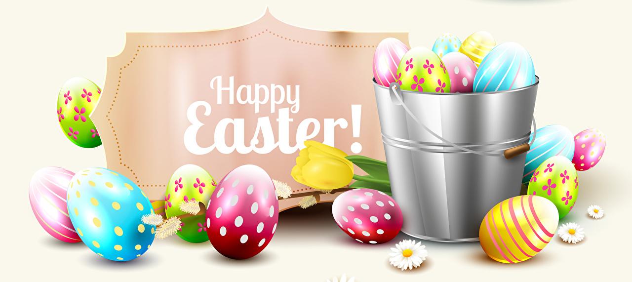 Фотографии Пасха инглийские Яйца ведра Белый фон дизайна Английский английская яиц яйцо яйцами ведре Ведро белом фоне белым фоном Дизайн