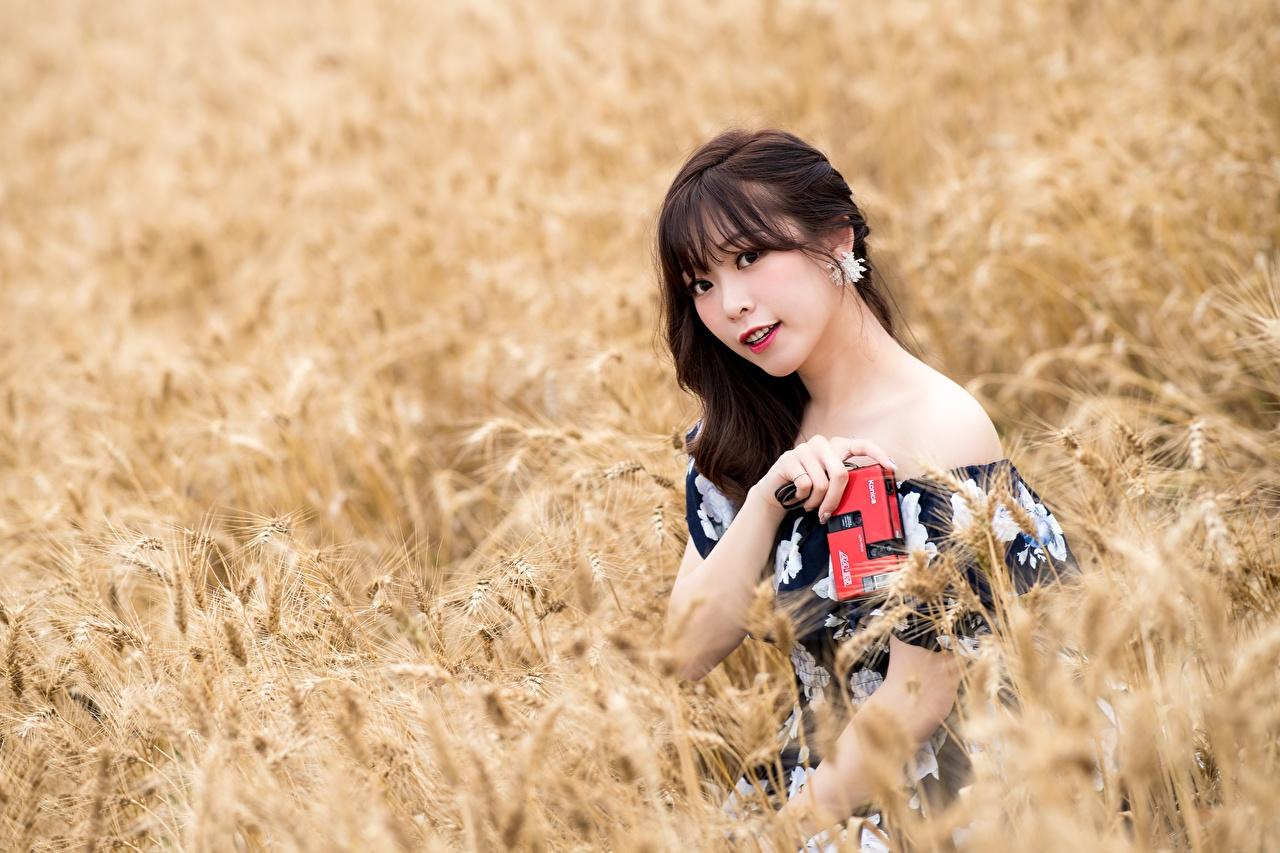 Фотография Брюнетка Размытый фон молодая женщина Поля азиатка смотрят брюнетки брюнеток боке девушка Девушки молодые женщины Азиаты азиатки Взгляд смотрит