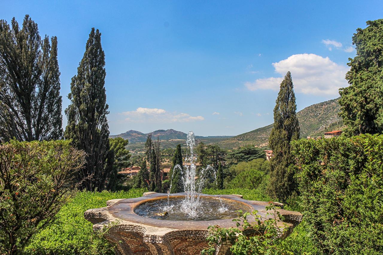 Фотография Италия Фонтаны Villa D'Este Tivoli Природа Парки Деревья дерево дерева деревьев
