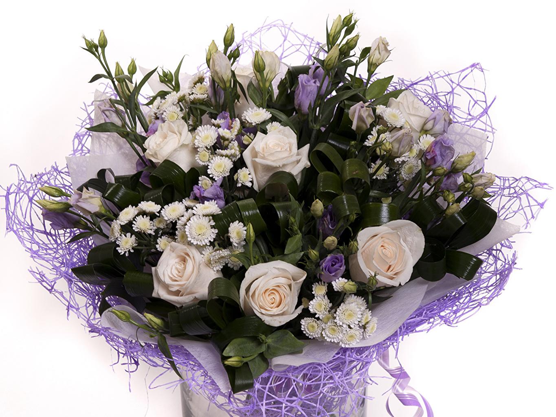 Фотографии букет роза Цветы Эустома Хризантемы Белый фон Букеты Розы цветок Лизантус белом фоне белым фоном