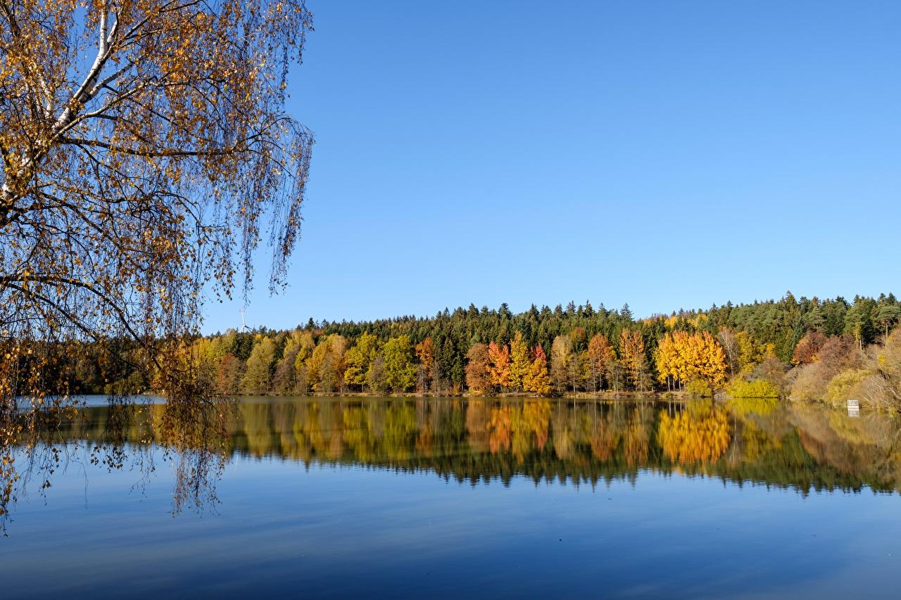 Фотографии Осень Природа Леса Озеро осенние лес
