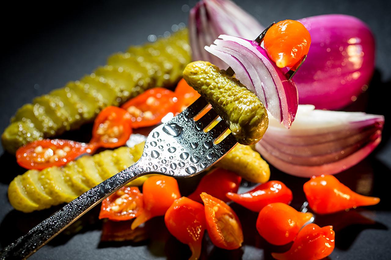 Фото Огурцы Помидоры Лук репчатый Пища Овощи вилки Томаты Еда Вилка столовая Продукты питания