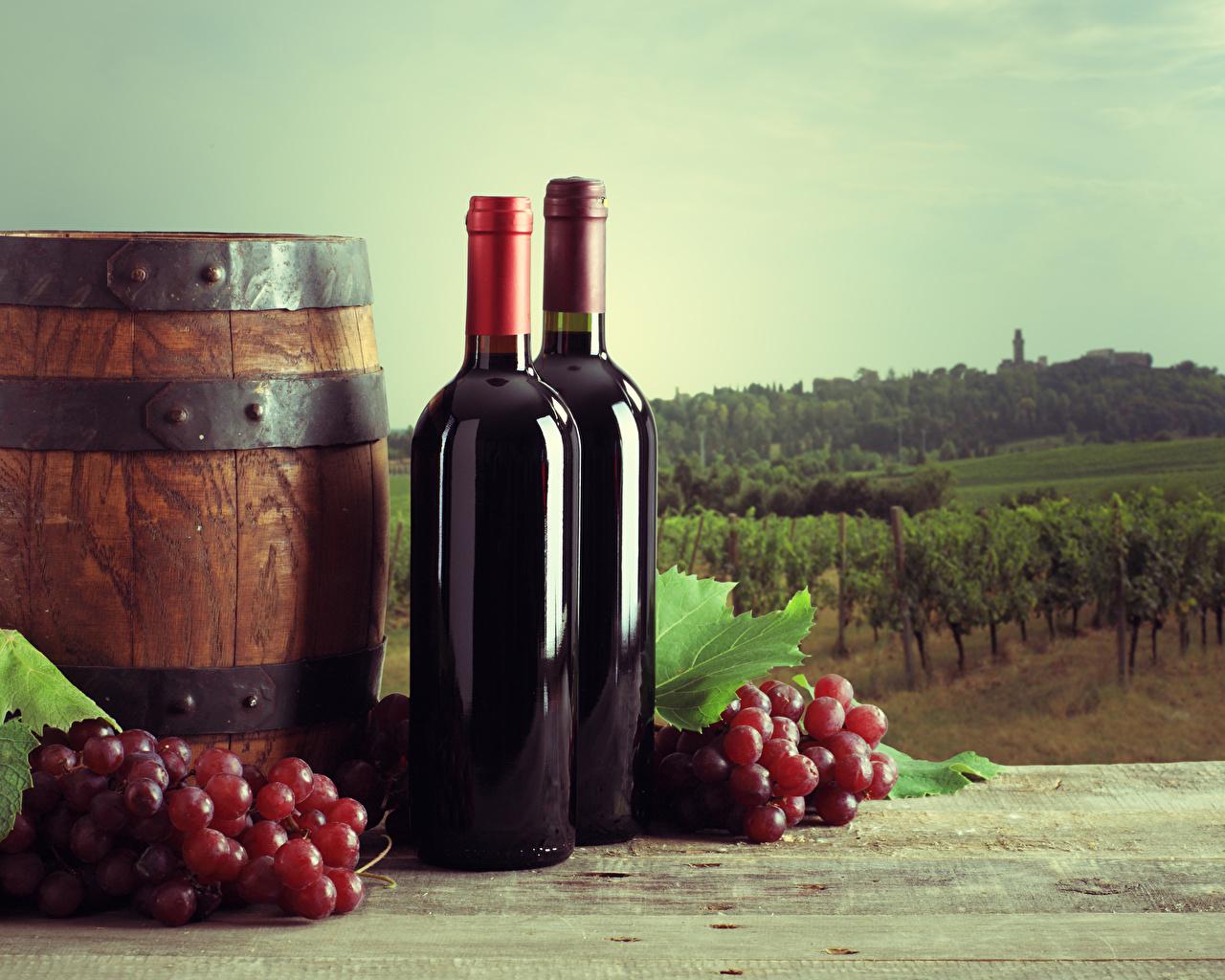 Фото Еда Вино Бочка Виноград бутылки Виноградник Пища Продукты питания Бутылка