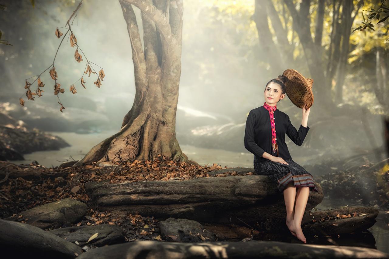 Фото брюнетки тумана Осень Шляпа молодая женщина Азиаты Ствол дерева сидя Камни брюнеток Брюнетка Туман тумане шляпы шляпе Девушки девушка осенние молодые женщины азиатка азиатки Сидит Камень сидящие