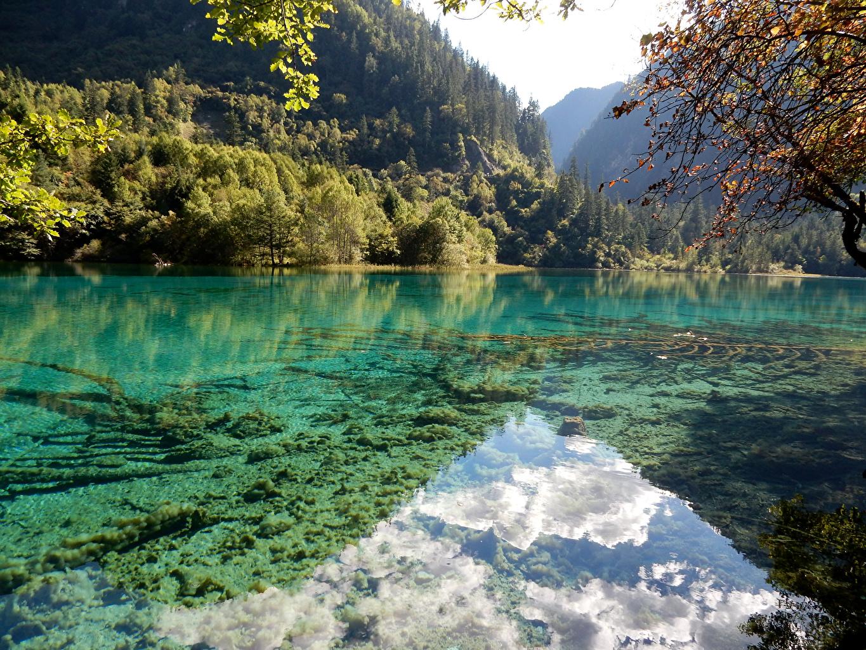 Фотографии Цзючжайгоу парк Китай Природа Леса Озеро Парки Пейзаж лес парк