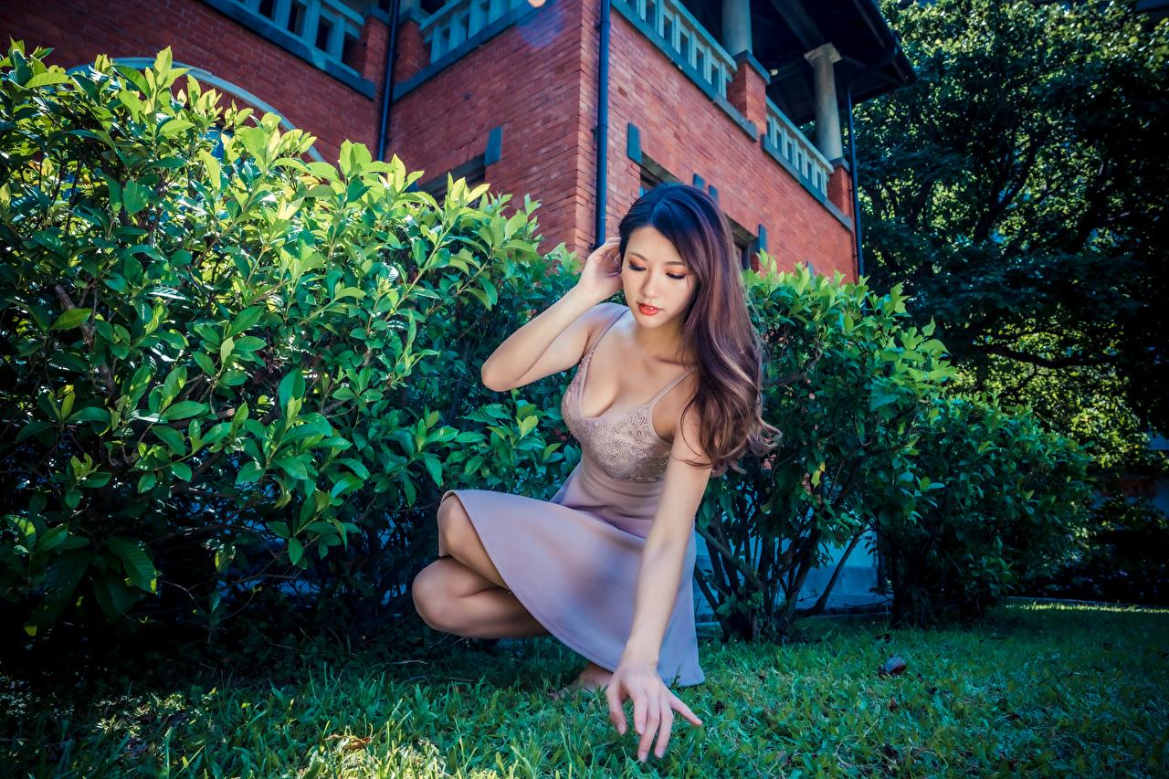Обои для рабочего стола Поза Девушки Азиаты Руки Сидит платья позирует девушка молодая женщина молодые женщины азиатки азиатка рука сидя сидящие Платье
