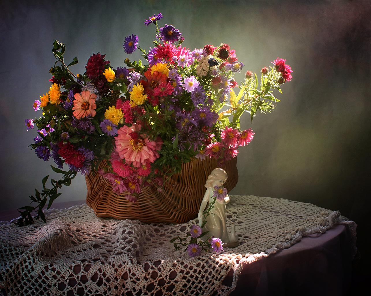 Обои Девочки Астры Цветы Корзина Стол Корзинка