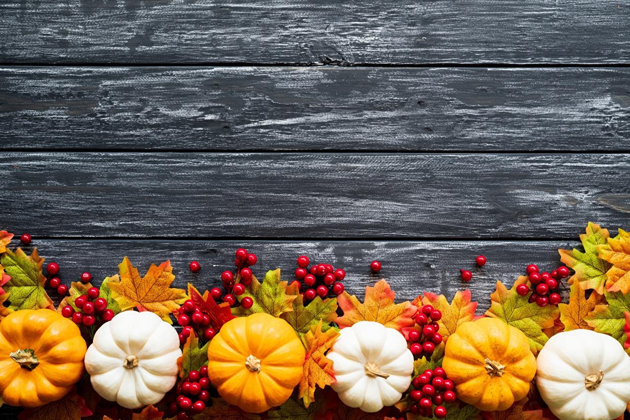 Картинка Тыква осенние Еда Шаблон поздравительной открытки Доски Осень Пища Продукты питания