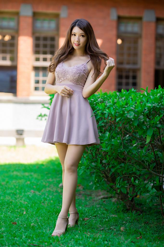 Картинки Шатенка Поза девушка Ноги азиатки смотрит Платье  для мобильного телефона шатенки позирует Девушки молодая женщина молодые женщины ног Азиаты азиатка Взгляд смотрят платья