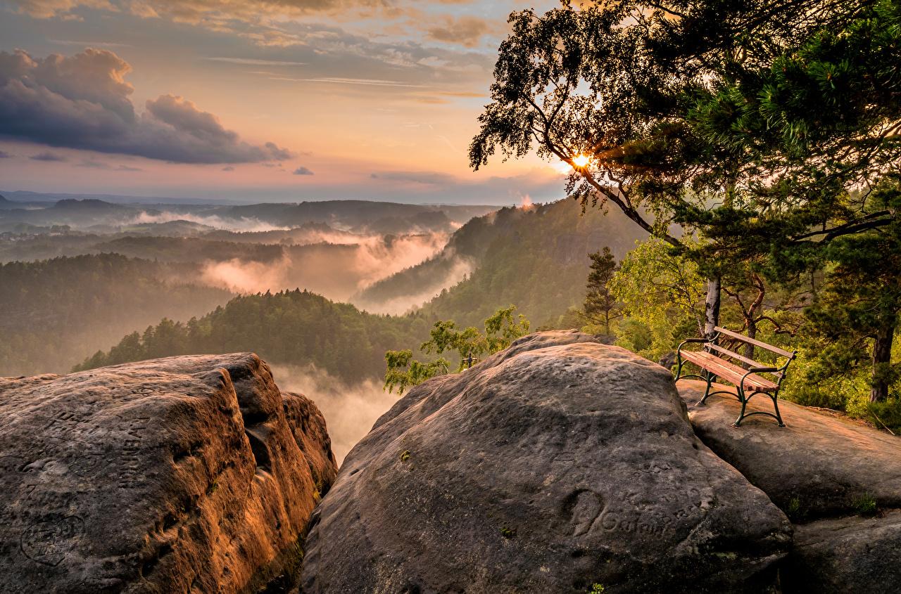 Фото Германия Saxony Скала Природа Пейзаж Вечер Камень Скамейка деревьев Утес скале скалы Камни Скамья дерево дерева Деревья