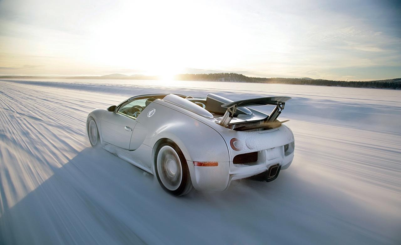 Обои для рабочего стола BUGATTI Veyron Grand Sport Roadster Родстер Белый снегу едущий Сзади Автомобили белых белые белая Снег едет снеге снега едущая скорость Движение авто машина машины вид сзади автомобиль