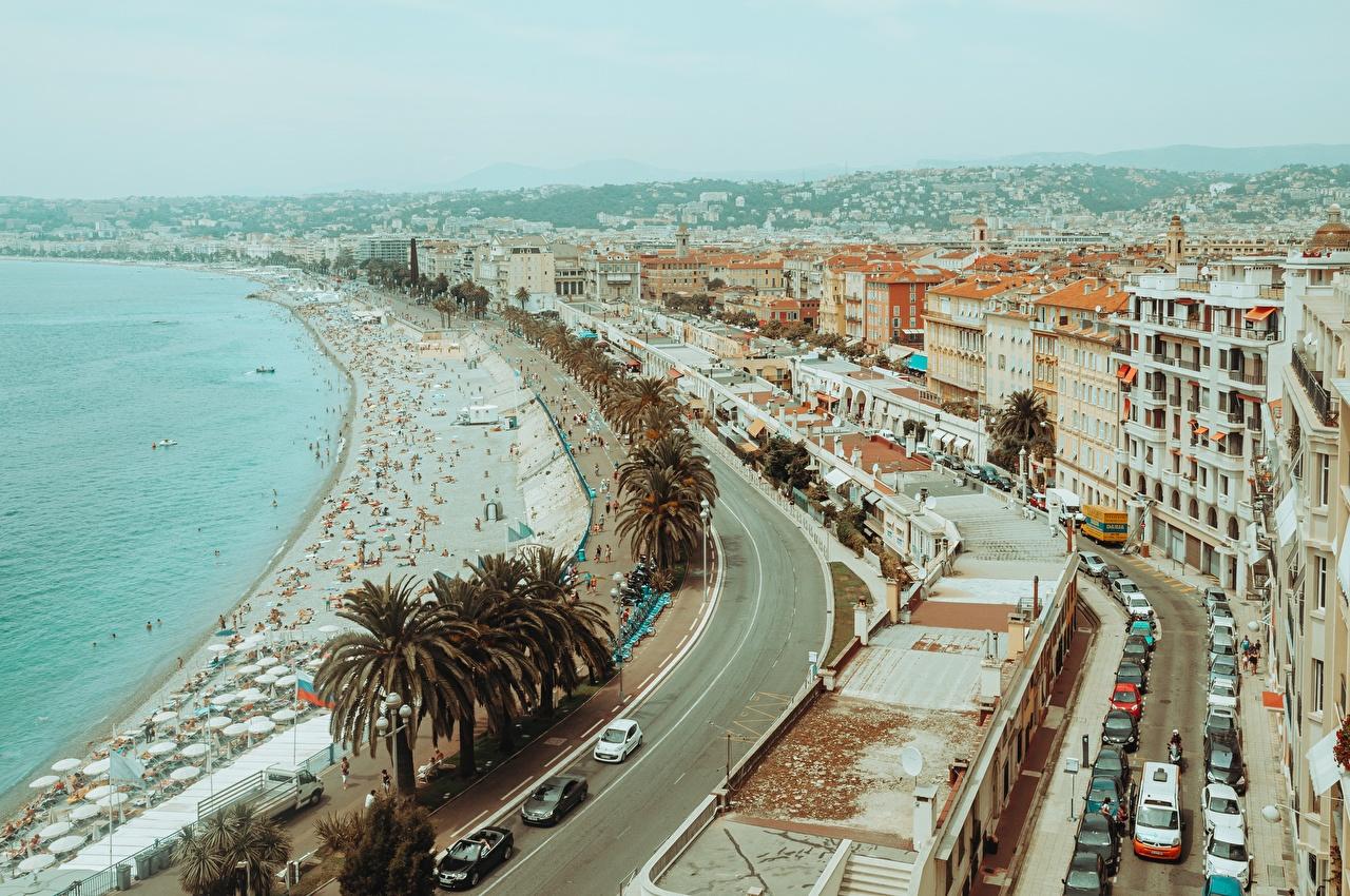 Фотография Франция Nice, Alpes-Maritimes пляже Пальмы берег город Пляж пляжа пляжи пальм пальма Побережье Города