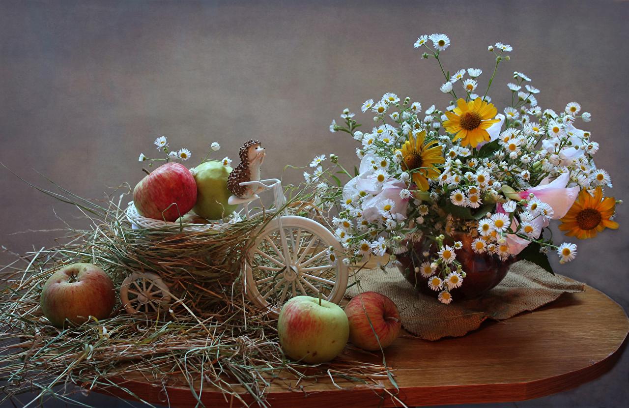 Фото Ежи букет Цветы Яблоки Ромашки корзины столы Продукты питания Натюрморт Ежики Букеты цветок Корзина ромашка Корзинка Еда Пища Стол стола