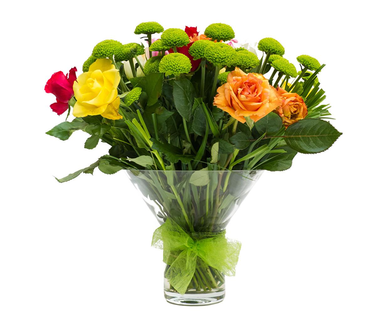 Фото букет роза Цветы Хризантемы Ваза бант белом фоне Букеты Розы цветок вазе вазы Бантик бантики Белый фон белым фоном