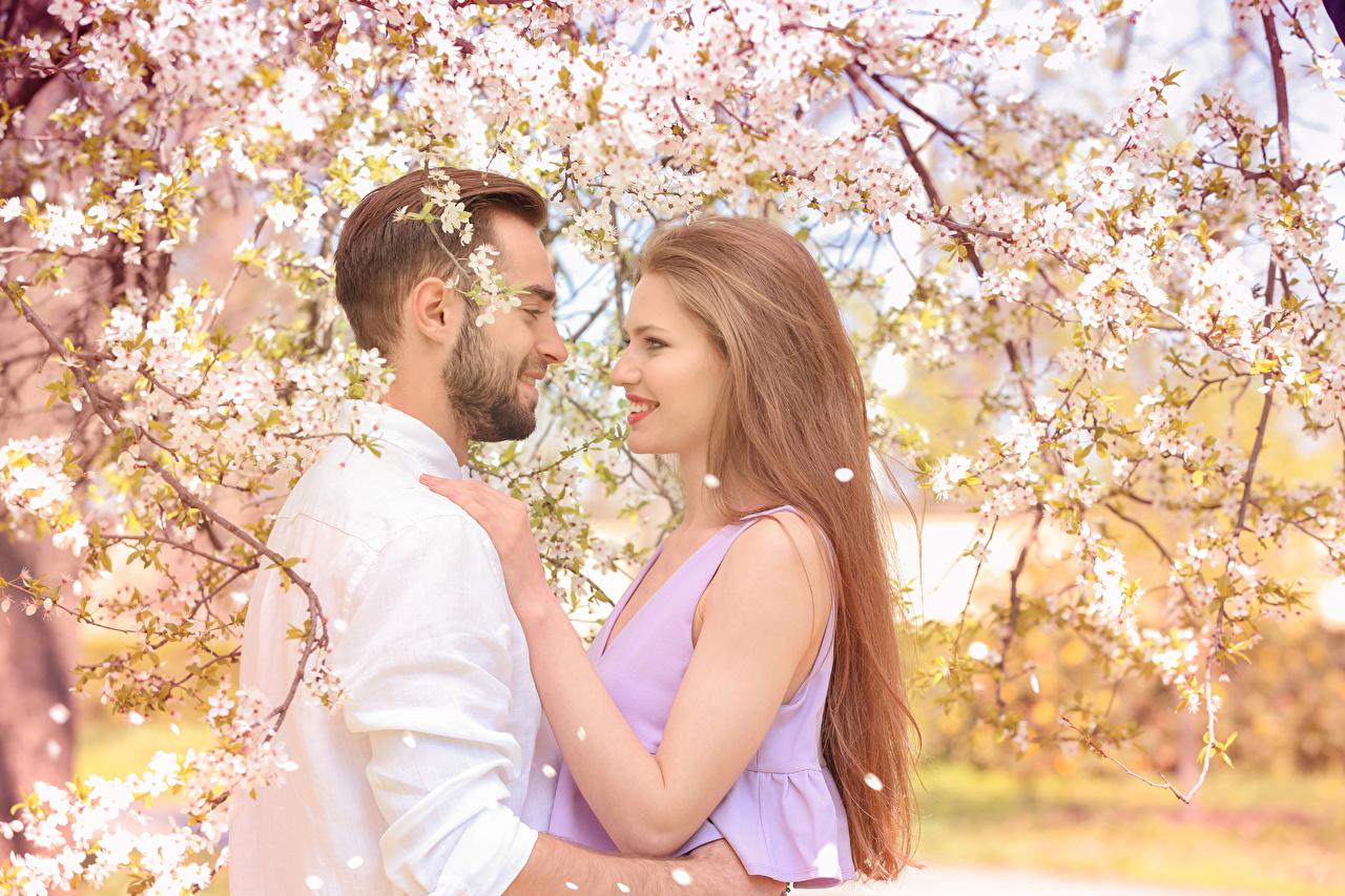 Фото русых Мужчины Улыбка Любовь вдвоем девушка Цветущие деревья Русые русая мужчина улыбается 2 два две Двое Девушки молодая женщина молодые женщины