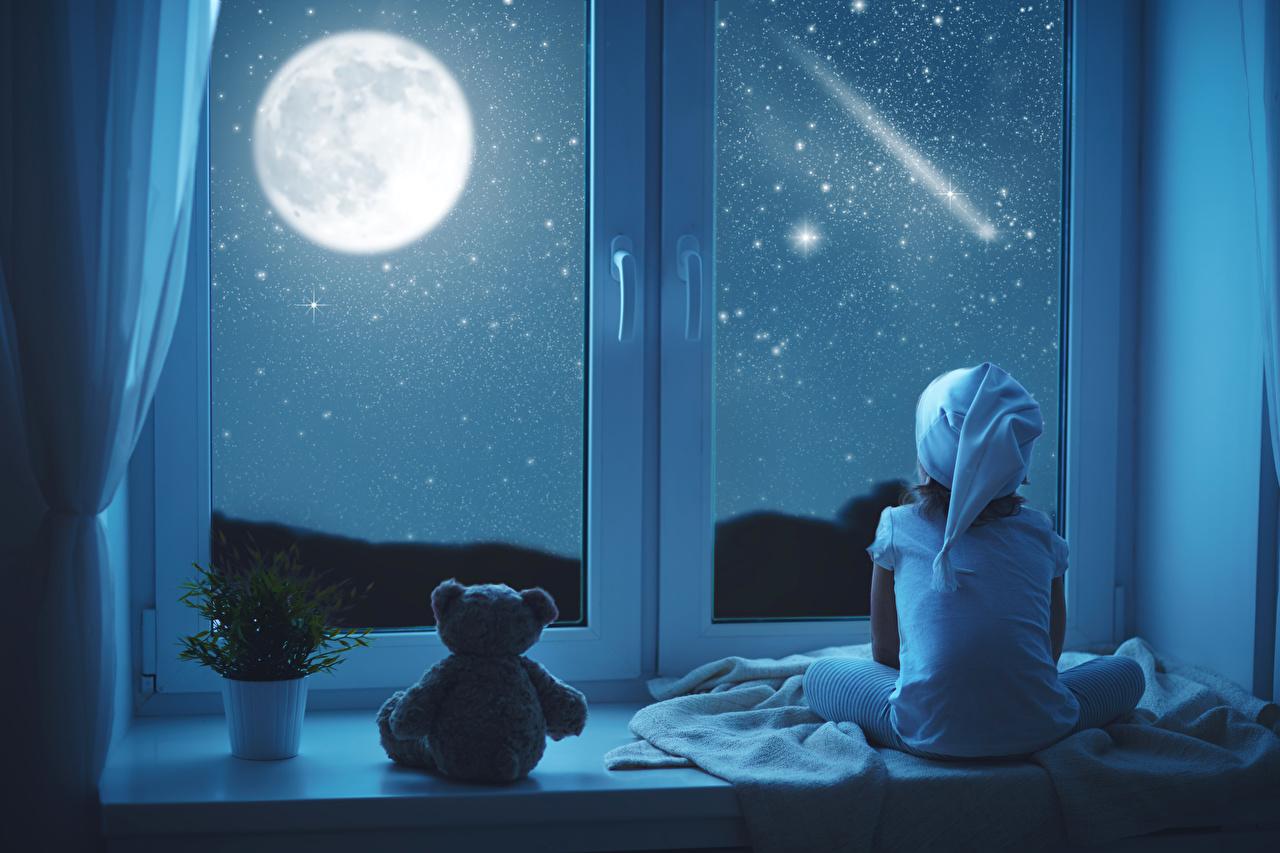 Фото Девочки Ребёнок Снег Луна Плюшевый мишка Окно Ночные сидящие Дети Мишки Ночь Сидит