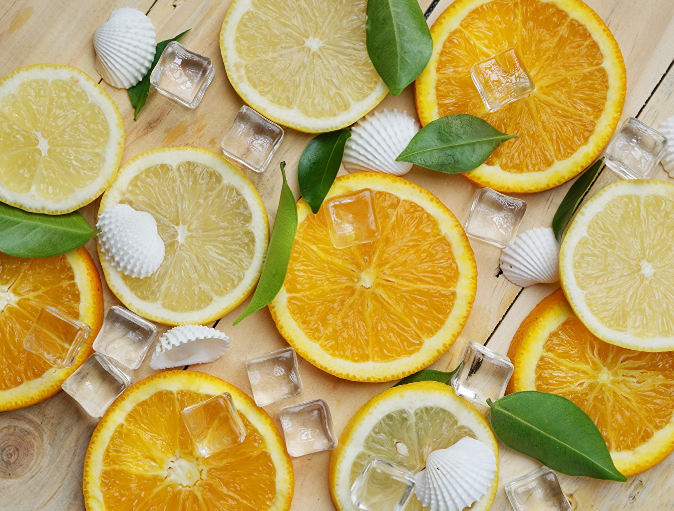 Картинки Текстура льда Апельсин Ракушки Продукты питания Лед Еда Пища