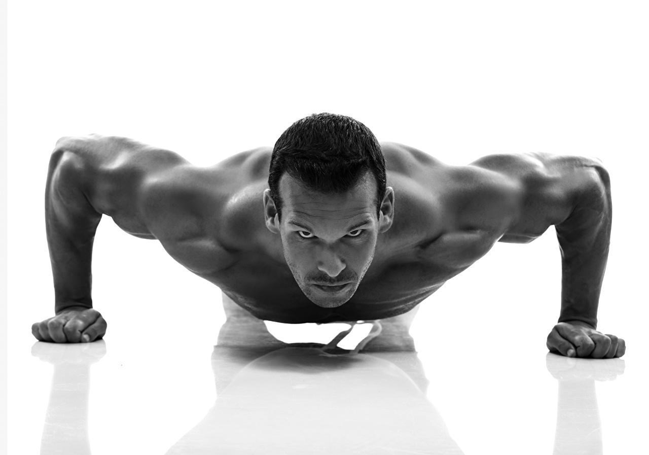 Картинки Красивые Отжимание Мышцы Мужчины Взгляд белом фоне красивая красивый отжимается отжимаются мужчина мускулы смотрит смотрят Белый фон белым фоном